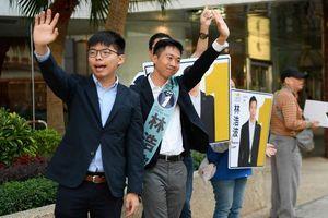 Phe dân chủ Hong Kong chiến thắng trong bầu cử cấp quận