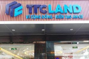 Địa ốc Sài Gòn Thương Tín 'ăn quỵt' 7,8 tỷ tiền thuế đang sở hữu bất động sản khủng nào?
