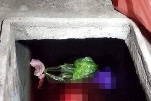 Khởi tố kẻ sát hại mẹ vợ dã man rồi vứt xác vào bể nước phi tang