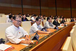 Hôm nay (26/11): Quốc hội biểu quyết thông qua nhiều dự luật, nghị quyết quan trọng