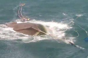 Chủ tàu cá đi tìm người thân của ngư phủ mất tích ở Cà Mau