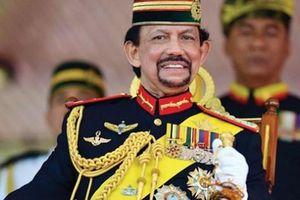 Cuộc sống giàu có, xa hoa của Quốc vương Brunei có cháu trai vừa tự ý vào sân trong trận đấu với U22 Việt Nam