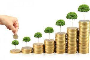 Làn sóng nới lỏng tiền tệ sẽ khiến dòng vốn trở lại với cổ phiếu?