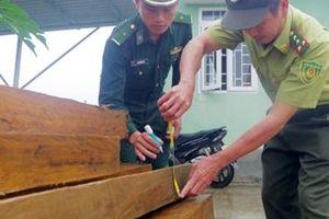 Bắt quả tang đối tượng vận chuyển 19 phách gỗ trái phép