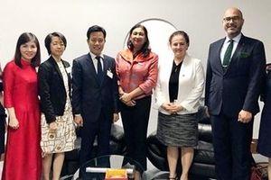 Việt Nam nỗ lực thực hiện các cam kết quốc tế về bình đẳng giới