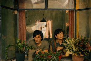 'Song Lang' chiến thắng tuyệt đối tại Liên hoan Phim Việt Nam năm 2019