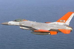 Mỹ hô biến 'chim săn mồi' F-16 thành UAV như thế nào?
