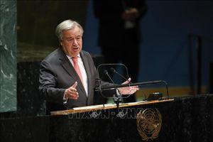 Tổng thư ký LHQ khẳng định hoạt động định cư của Israel ở Bờ Tây 'không có giá trị pháp lý'