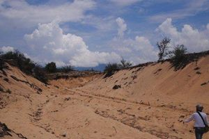 Thừa Thiên-Huế: Hàng chục ha rừng phòng hộ sẽ chuyển đổi để làm du lịch