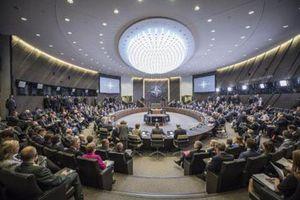 NATO chia rẽ bởi 'lời nhạo báng trần trụi'