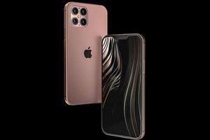 Apple sẽ chỉ phát hành một mẫu iPhone 5G vào năm 2020