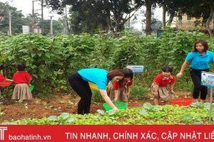 Mướt mắt những vườn rau bán trú của cô trò ở huyện miền núi Hà Tĩnh