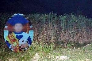 Mẹ kế khai giết con chồng, phi tang xác trong vườn mía là do có người xui khiến