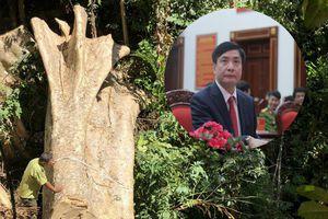Bí thư Đắk Lắk: 'Rừng đặc dụng Nam Kar bị tàn phá là việc rất nghiêm trọng'