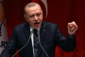 Tổng thống Thổ Nhĩ Kỳ mỉa mai đồng cấp Pháp về tuyên bố NATO 'chết não'