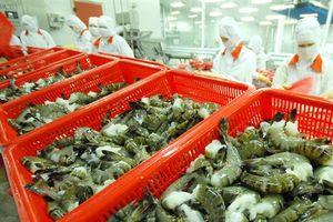 Kim ngạch xuất khẩu thủy sản đạt hơn 7,8 tỷ USD