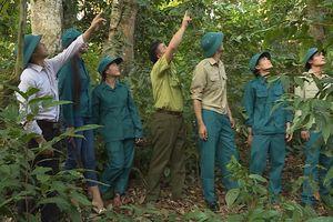 Hà Giang: Bắc Mê tăng cường công tác quản lý, bảo vệ và phát triển rừng