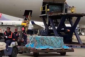 Máy bay chở thi thể Cao Dĩ Tường về tới Đài Loan