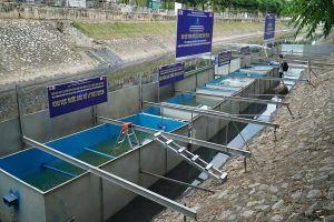 JEBO: GĐ Sở Xây dựng Hà Nội phát biểu 'vô căn cứ' về việc làm sạch sông Tô Lịch