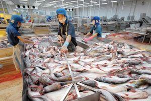 Cổ phiếu tăng thần tốc, Thủy sản Hùng Vương muốn bán 5 triệu cổ phiếu quỹ