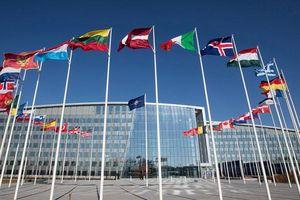 NATO 'nguy kịch', Nga mừng hơn ai hết?