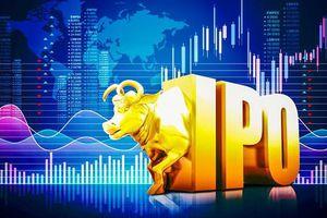 Kỳ vọng nâng chất thị trường chứng khoán