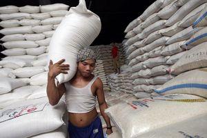 Việt Nam giành giải gạo ngon nhất thế giới, Thái Lan lo lắng tụt hậu