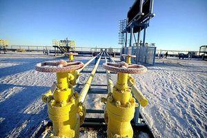Nga và Ukraine ký thỏa thuận trung chuyển dầu mỏ 10 năm