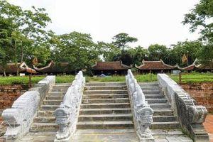 Bí ẩn về những 'mộc tinh' ở cố đô Lam Kinh: Kỳ 2: Chuyện ly kỳ cảm động về cây lim đại thụ 'hiến thân'