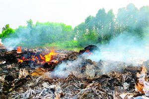 Khói rác Bắc Ninh hủy hoại môi trường sống