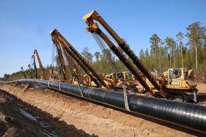 Nga và Gazprom phát triển dự án đường ống dẫn khí đến Trung Quốc thông qua Mông Cổ
