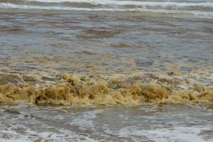 Nước biển đổi màu lạ, nổi bọt vàng bất thường ở Quảng Ngãi