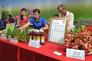 Cảnh báo nông sản Việt Nam sụt giảm giá