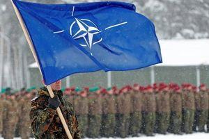 Báo Đức: Trump nên mời Nga gia nhập liên minh quân sự NATO
