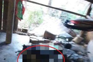 Kon Tum: Người phụ nữ bị lửa thiêu chết trong lúc ngủ