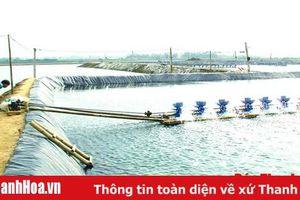 Phòng chống dịch bệnh động vật thủy sản trên địa bàn tỉnh năm 2020