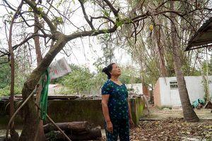 Những bất thường đáng lo ngại về môi trường xung quanh Khu Kinh tế Dung Quất
