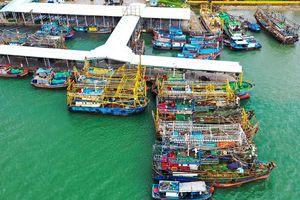 Điều tra các vụ tàu thép của ngư dân chìm 'bí ẩn'