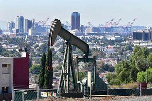 Giá dầu có tuần tăng mạnh nhất từ tháng 6 khi OPEC+ chốt giảm thêm 500.000 thùng/ngày