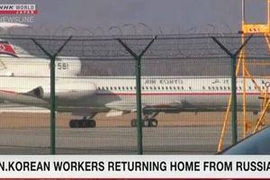 Báo Nhật: Nga dường như đang cho hồi hương lao động Triều Tiên