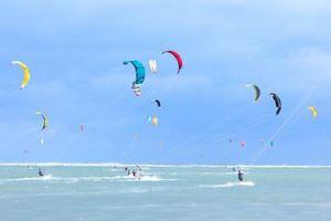 Festival ván diều biển Ninh Chữ gây ấn tượng mạnh với du khách quốc tế