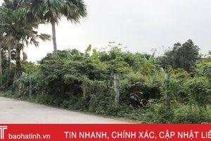 Hơn 2.900 lô đất vắng chủ, TP Hà Tĩnh 'đau đầu' với công tác quản lý