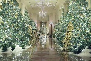 58 cây thông thắp sáng Giáng sinh tại Nhà Trắng Mỹ