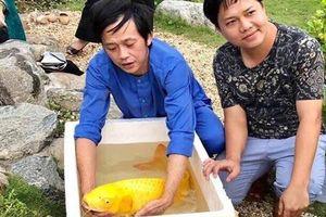 Vì sao Hoài Linh đặt tên cá là Trấn Thành, Trường Giang, Chí Tài?