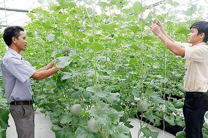 Hỗ trợ nông dân phát triển nông nghiệp công nghệ cao