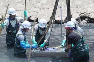 Công nghệ xử lý sông Tô Lịch của Nhật Bản chưa thật sự phù hợp?