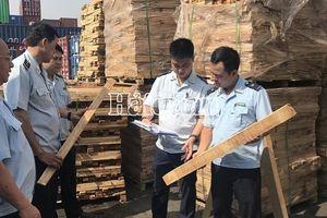 Hải quan TPHCM bắt 1.000m3 gỗ xẻ xuất khẩu, trốn thuế gần 3 tỷ đồng