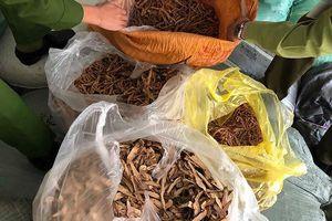 Kiểm tra nhiều địa điểm nghi chứa thuốc bắc nhập lậu tại Ninh Hiệp