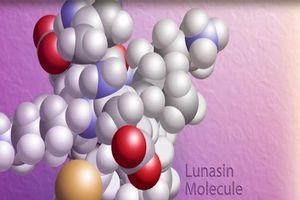 Hội thảo khoa học 'Công bố kết quả nghiên cứu về hoạt chất Lunasin chiết xuất từ Soy Protein hỗ trợ điều trị ung thư phổi'