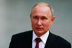 Tổng thống Putin lên án lệnh cấm Nga dự World Cup, Olympic